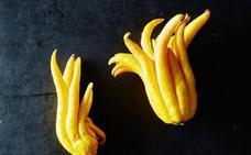 La mano cítrica de Buda