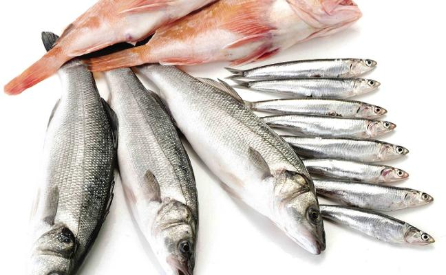 El pescado de estero, excelente