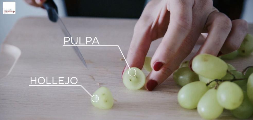 Diseccionamos una uva