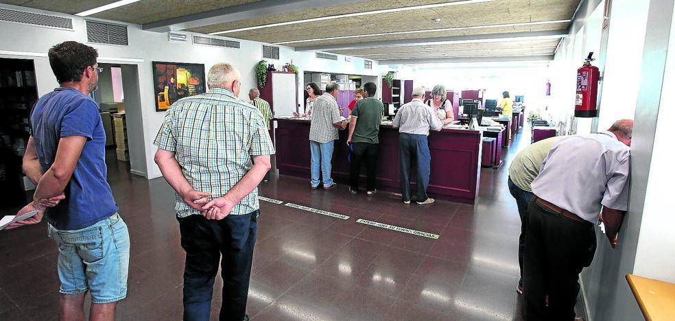 El Consejo abre un proceso de revisión de los rendimientos preasignados por helada