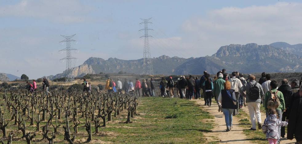 La ILP en Defensa del Paisaje Vitícola podrá debatirse en el Parlamento de La Rioja