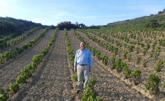 Ignacio Peral: «Nos hemos adherido a vinos de municipio de San Vicente y veremos cómo funciona»