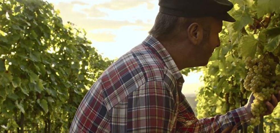 El Consejo rectifica el vídeo de su nueva campaña al dudar de que todas las imágenes sean de Rioja