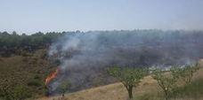 Incendio en la huesera de Yerga, en Alfaro esta mañana