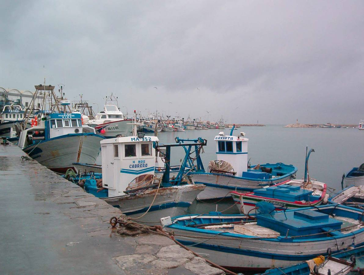 Hallan el cadáver de una mujer en el puerto pesquero de Estepona