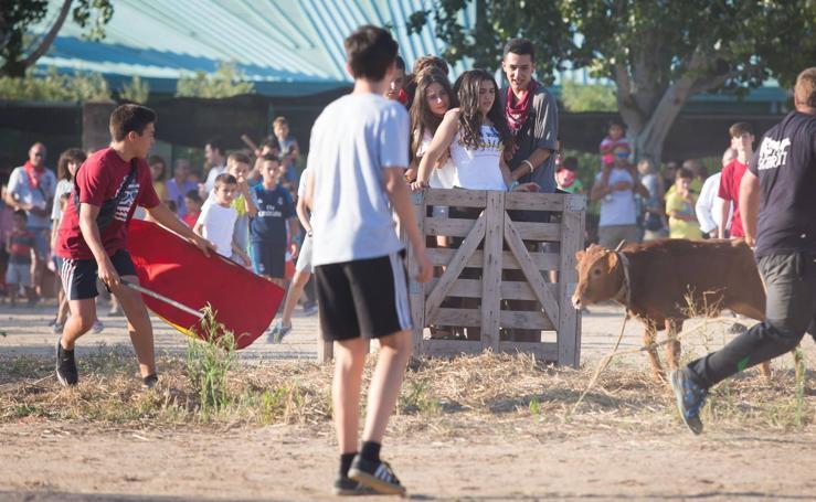 Fiestas de El Cortijo