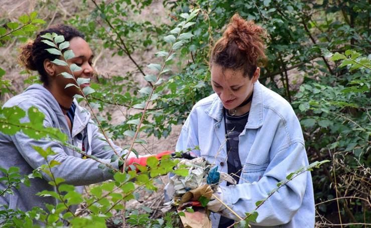 Una limpieza ambiental en el entorno de la Ribera del Ebro