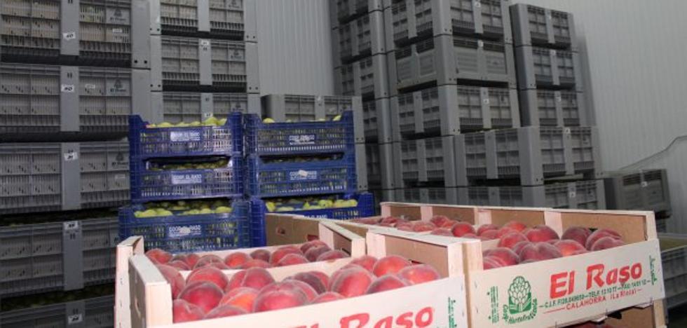 La fruta, una crisis estructural
