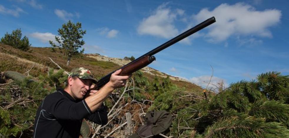 La escopeta tira al monte