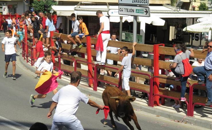 Día del Joven en fiestas de Alfaro