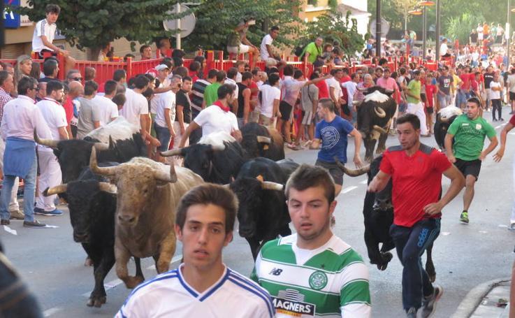 Día de huelga en Alfaro