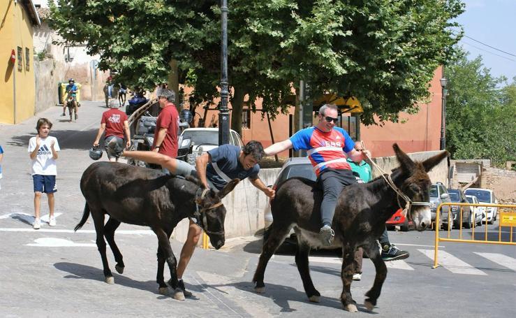 Carrera de burros en Tricio