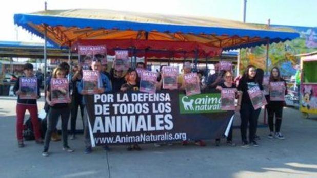 AnimaNaturalis, por un Ferial sin animales