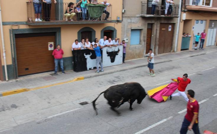 Toro de San Miguel en Rincón