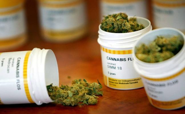Debate en el Parlamento riojano sobre la legalización del cannabis terapéutico
