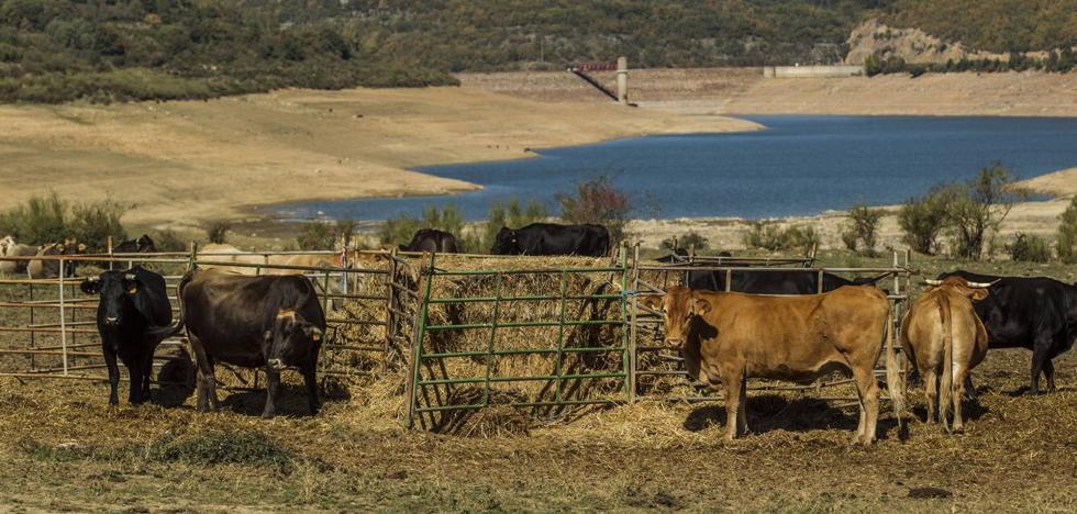 La sequía comienza a amenazar la garantía de agua de boca