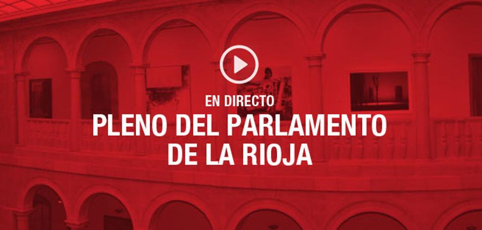 EN DIRECTO: Pleno en el Parlamento de La Rioja