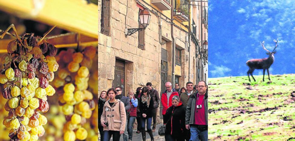 Otoño, temporada alta en La Rioja