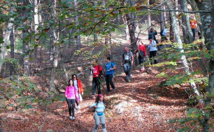 VII Marcha por el entorno natural de Santurdejo