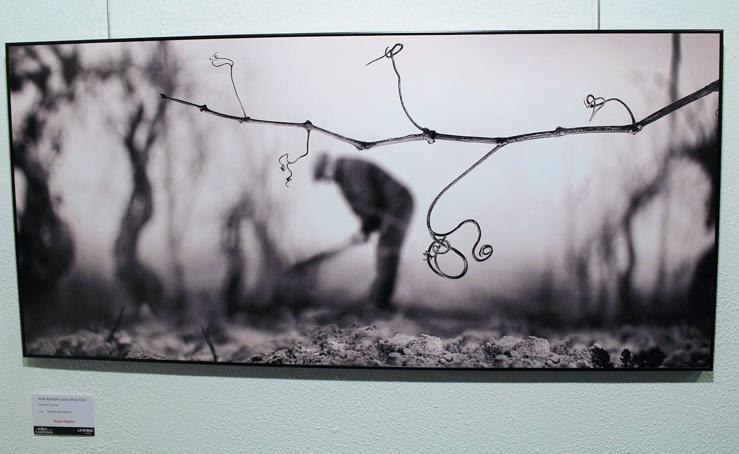XIX Concurso de Fotografías de Rioja y los 5 sentidos