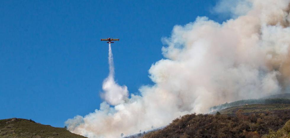Medio Ambiente destinará más de 300.000 euros a la prevención de incendios forestales