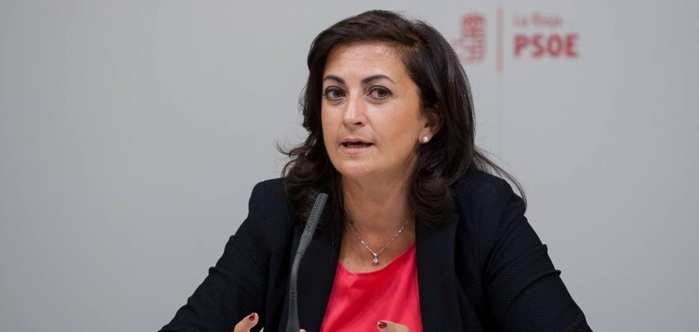 El PSOE llevará a Ceniceros al Pleno a hablar de infraestructuras
