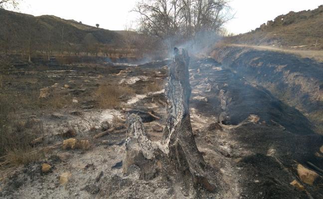 El incendio de Gutur, que quemó unas cien hectáreas, pudo ser intencionado