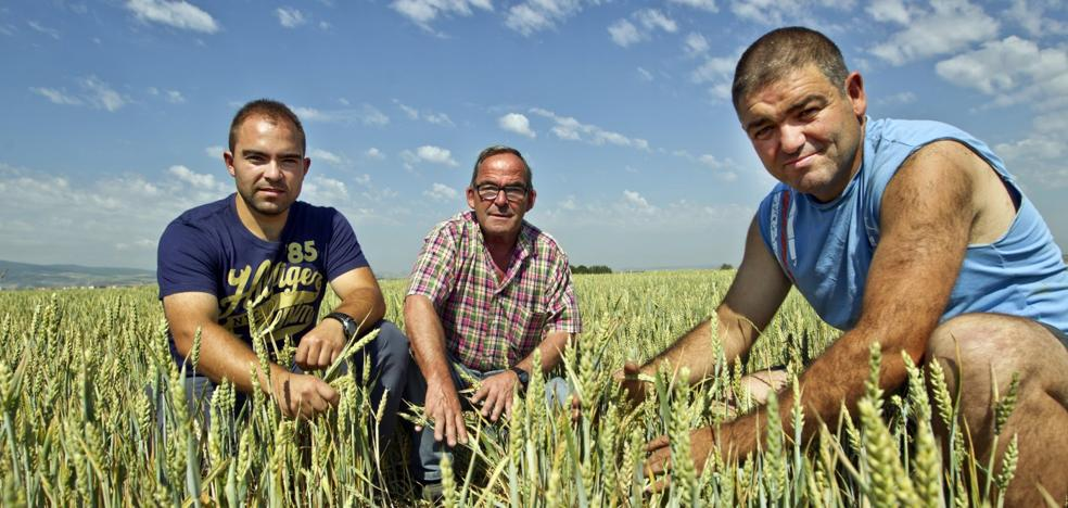 El Congreso corrige al Gobierno e incluye a La Rioja en las medidas contra la sequía
