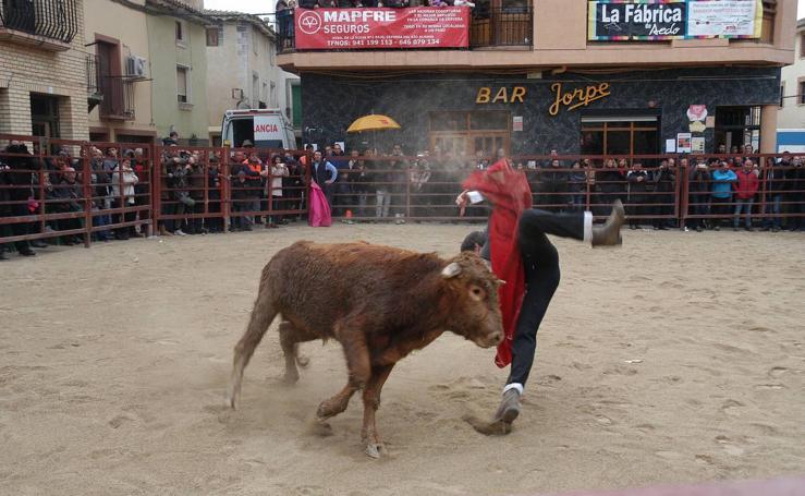 Festejo taurino en Rincón de Olivedo