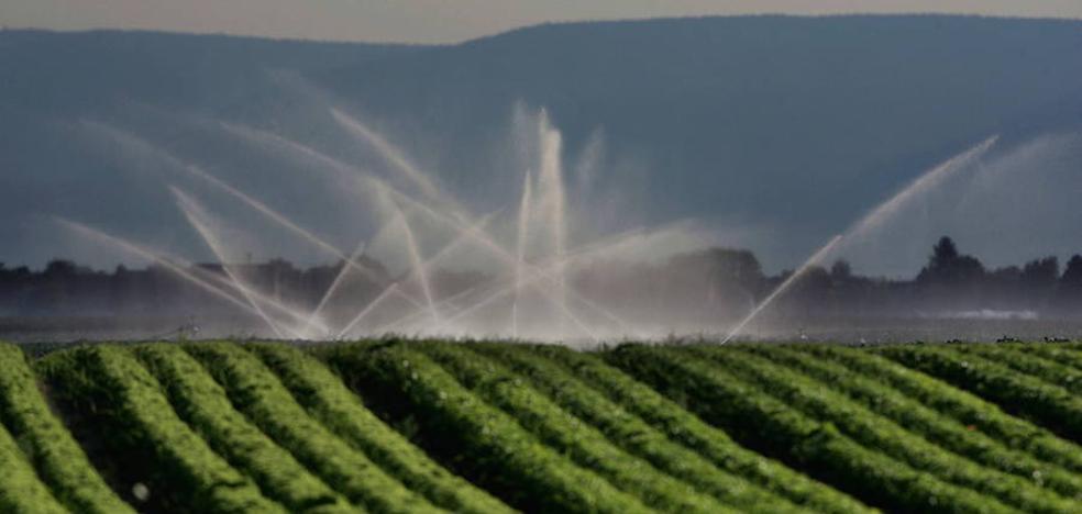 Agricultura invertirá 8,6 millones en el proyecto de transformación en regadío de 'La Llana' en Huércanos