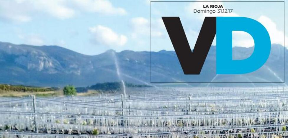 La Rioja resume el año, este domingo en el suplemento V