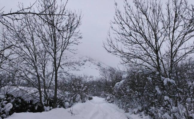 La nevada del domingo (2)
