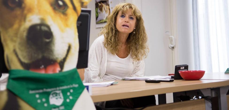 """La Protectora de Animales no descarta movilizaciones ante la """"paralización"""" en el Parlamento de la ILP de defensa animal"""
