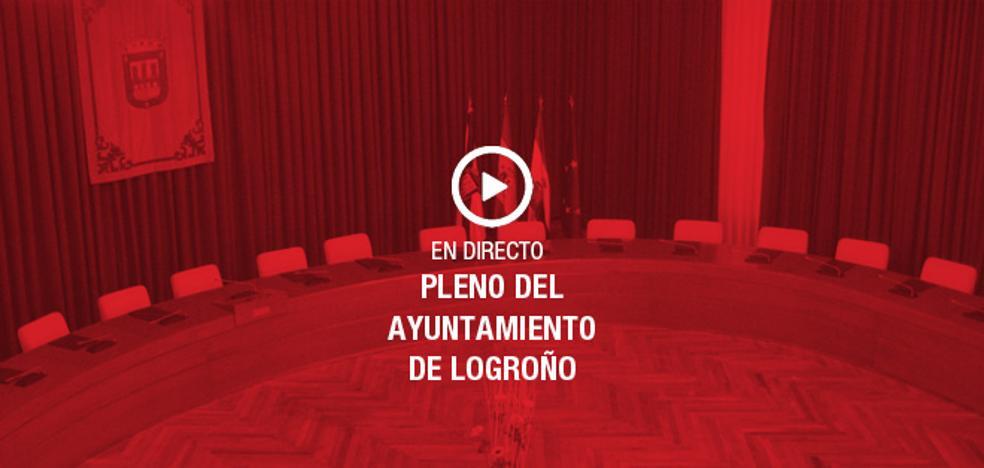 Directo: Pleno del Ayuntamiento de Logroño
