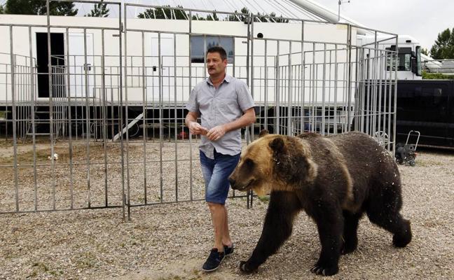 Logroño se declara «ciudad libre de circos con animales»