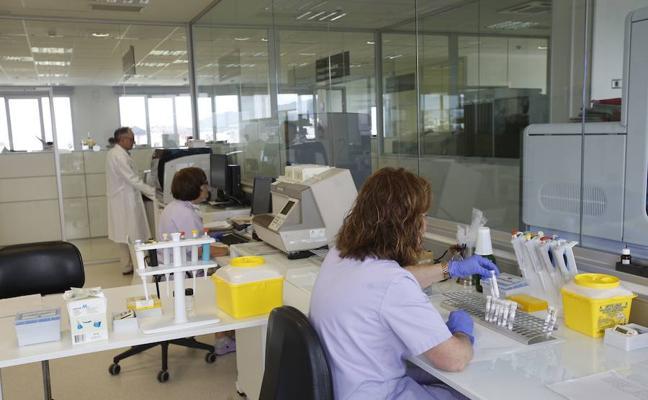 Descubren un proceso que previene la muerte neuronal que causa el alzhéimer o el ictus