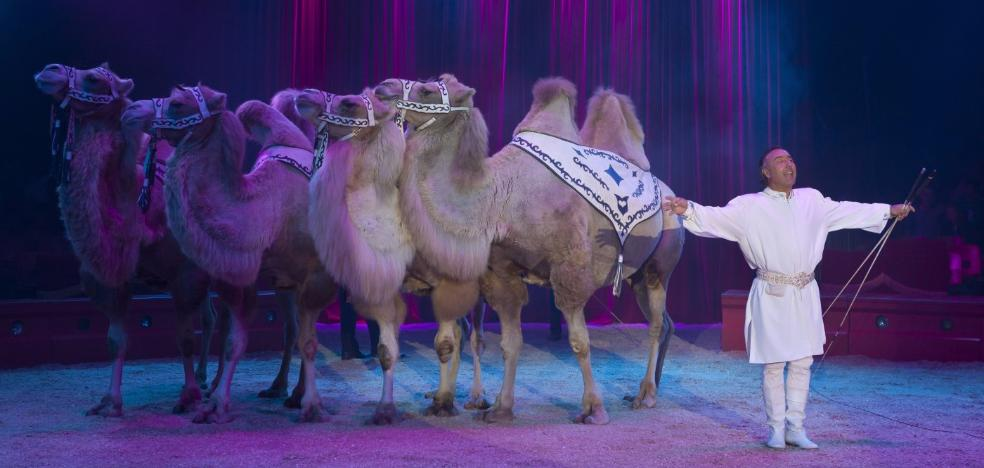 Los circos quieren seguir trayendo animales a Logroño