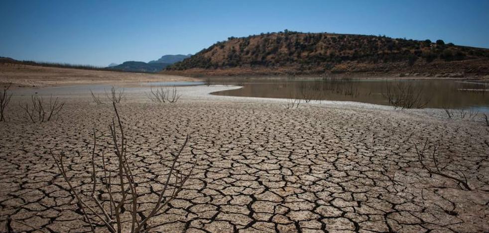 Los tres últimos años fueron los más calurosos jamás registrados