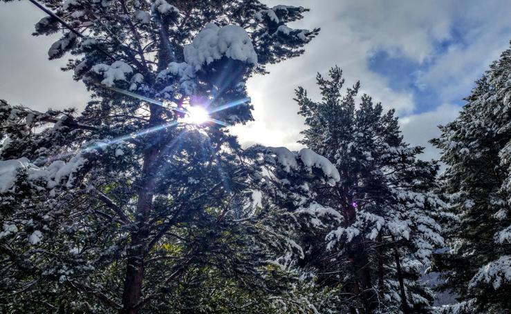 La nieve vuelve al Rasillo