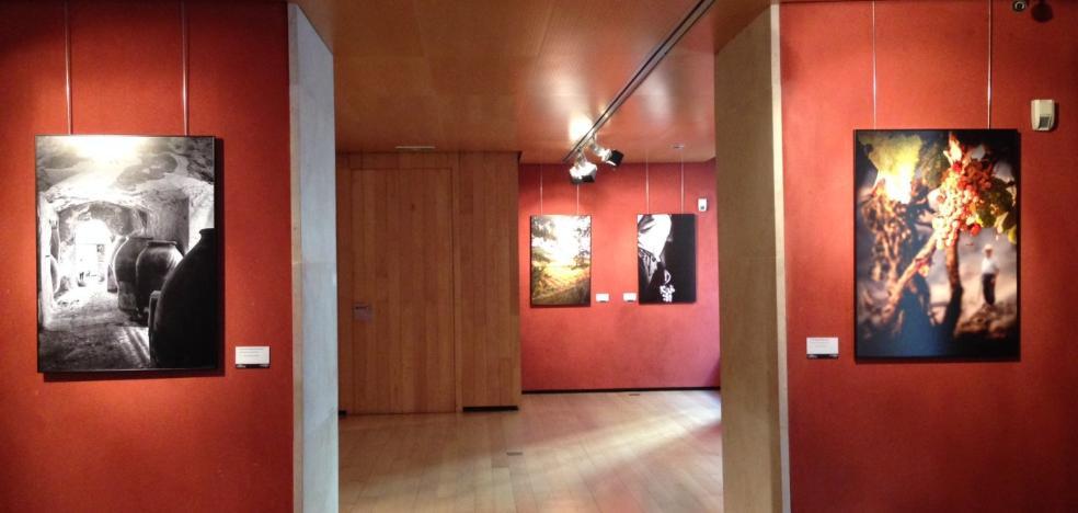 Exposición de fotos 'El Rioja y los 5 sentidos'