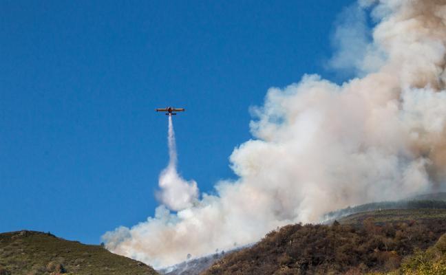 Medio Ambiente llevó a la Fiscalía el pasado año 7 casos de incendios provocados