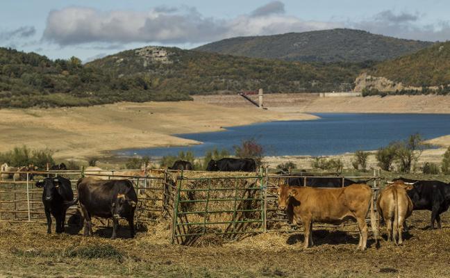 La ley contra la sequía incluye finalmente La Rioja al prosperar la enmienda del PSOE