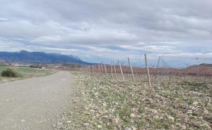 Haro arreglará cuatro caminos rurales en abril con una partida de 130.000 euros