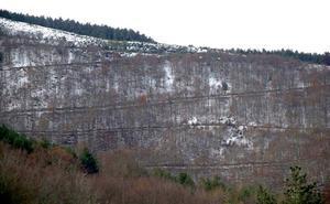 Medio Ambiente subvenciona el desarrollo y ordenación de los bosques en zonas rurales