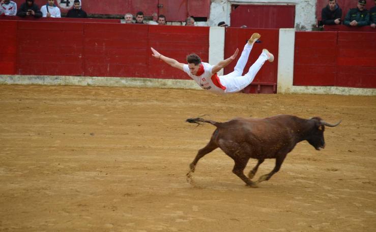Encierros y vaquillas en Calahorra