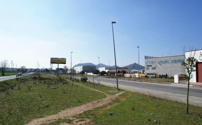 Asprodema se podría hacer cargo de las zonas verdes de La Pedregosa