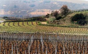 Jornada de reflexión sobre el mundo rural de La Rioja