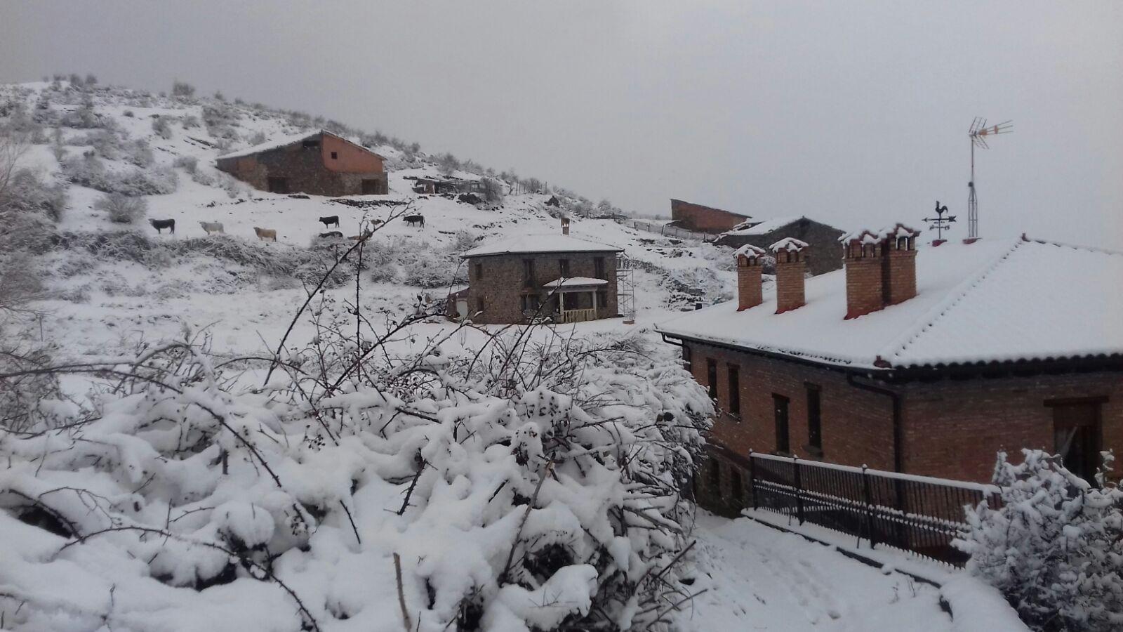 Vuelve la nieve a La Rioja