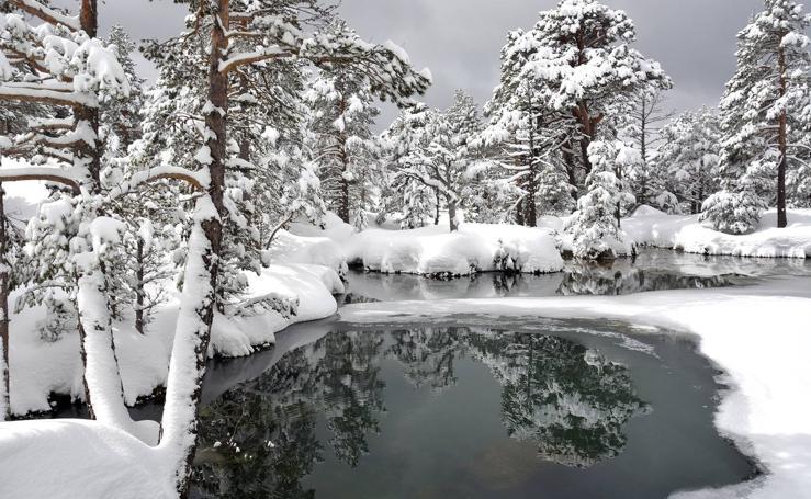 Nieve en Sierra Cebollera