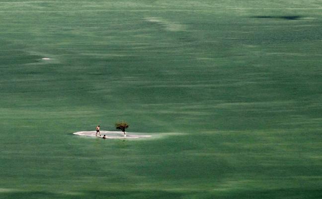 Vida en el mar Muerto